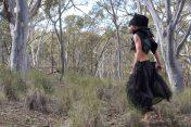 Tracking the Black Cockatoo 10