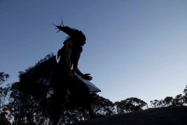 Tracking the Black Cockatoo 4 Heike Qualitz