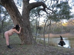 Tracking the Black Cockatoo 5 Heike Qualitz