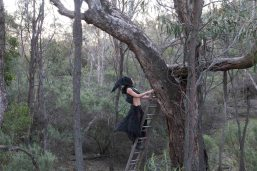 Tracking the Black Cockatoo 6 Heike Qualitz